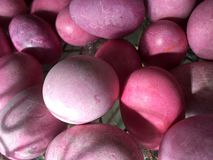 Pink easter eggs Stock Photography