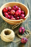 Pink easter eggs. Stock Images