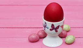 Pink Easter Stock Photography
