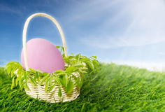 Pink egg in basket Stock Photos