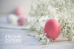 Pink egg and gypsophila baby breath flower on white painted ru Stock Image