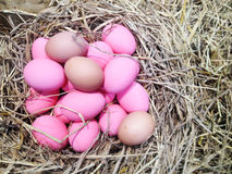Pink egg on hay Stock Photos