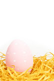 Pink egg in nest Stock Photography