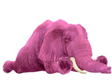 Pink Elephant - 02. PLEASE let sleeping pink elephants lie! They're usually hung over Stock Illustration