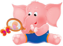 Pink elephant Stock Images