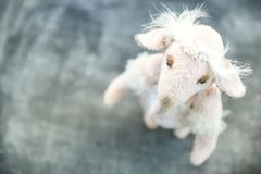 Pink handmade toy elephant ballerinа in white Stock Photography