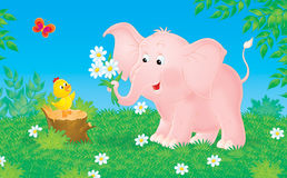 Pink elephant and little chick Stock Photography