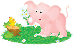 Pink elephant and little chick Royalty Free Stock Images