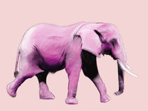 Pink Elephant Painting. Digital painting of a pink elephant walking Royalty Free Stock Photography