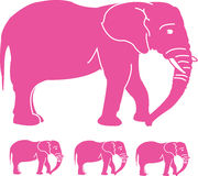 Pink Elephants Stock Photography