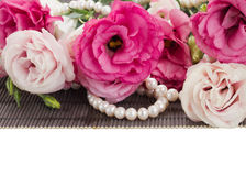 Pink eustoma flowers and pearls border Stock Image