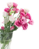 Pink eustoma flowers in vase Stock Photos