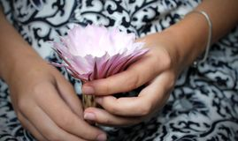 Pink exotic flower in the hands Royalty Free Stock Images