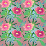 Pink exotic flowers Royalty Free Stock Images