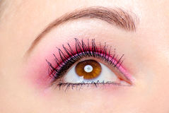 Pink eye makeup Stock Image