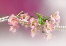 pink för blommahalsbandpärla Fotografering för Bildbyråer