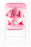 Pink fabric pig is on a chair Royalty Free Stock Photo