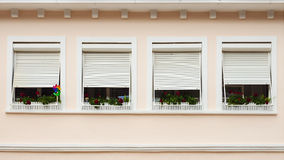 Pink facade with windows decorated with flowers Royalty Free Stock Image
