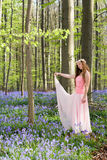 Pink fairy in bluebells forest Royalty Free Stock Photography
