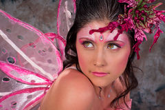Pink Fairy of Love Royalty Free Stock Images