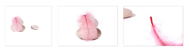 Pink feather and rocks. On white background stock photography