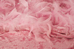 Pink feathers on crushed velvet. Fluffy pink feathers on pink crushed velvet stock image