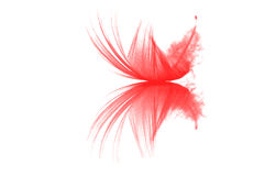 Pink feather on a white background Stock Photo