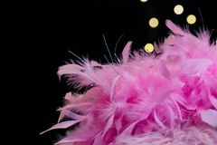 Pink feathers with bokeh lights. Hot pink feathers with bokeh lights on black background Stock Photography