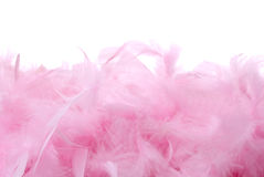 Pink feathers pile | Isolated. Pile of bird feathers with the space for text. Isolated on white Stock Photo