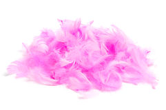 Pink feathers. A pile of soft pink feathers on a white background Royalty Free Stock Photos