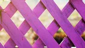 Pink fence garden stock photos