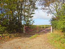 Pink field gate Stock Photo