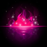 Pink Fire Shows Ocean Fiery And Starred. Pink Fire Indicating Blazing Sea And Raging Stock Images