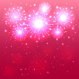 Pink firework Stock Images