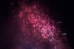 Pink fireworks in a black sky Royalty Free Stock Photo