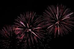 Pink fireworks display on dark sky background Stock Images