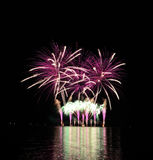 Pink fireworks Royalty Free Stock Image