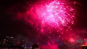 Pink Fireworks Sydney stock video