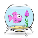 Pink fish in fishbowl. Lonely pink fish is looking at the flower in the aquarium Royalty Free Stock Photos