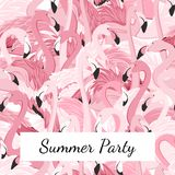 Pink flamingo birds crowd group summer party. Exotic pink purple flamingo birds crowd group gathering flamboyance. Long neck, beak, body, feather detailed Royalty Free Stock Photos