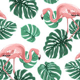 Pink flamingo birds green monstera leaves pattern