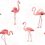 Pink flamingo birds rose flowers outline pattern Royalty Free Stock Images