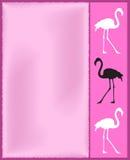 Pink flamingo card Stock Photography