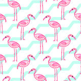Pink flamingo on chevron blue and white pattern. Stock Images