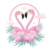 Vector illustration pink flamingo couple. Cool flamingo decorati Stock Image