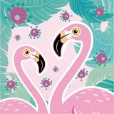 Vector illustration pink flamingo couple. Cool flamingo decorati Stock Photo
