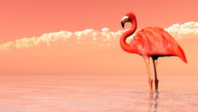 Pink flamingo - 3D render Royalty Free Stock Photography