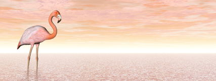 Pink flamingo - 3D render Royalty Free Stock Photos