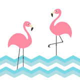 Pink flamingo family set. Blue sea ocean water zigzag wave. Exotic tropical bird. Zoo animal collection. Cute cartoon character. Decoration element. Flat Stock Images
