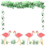 Pink flamingo frame Royalty Free Stock Photography
